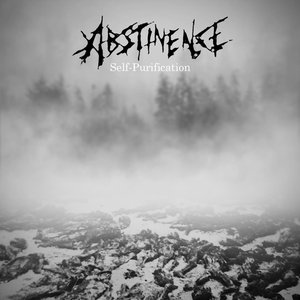 Image for 'Abstinence'