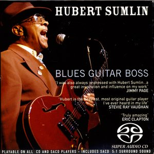 Image for 'Blues Guitar Boss'