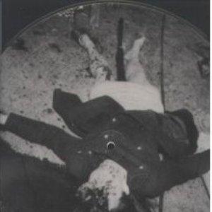 Image for 'Insane Pleasures'