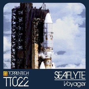 Imagen de 'Voyager'