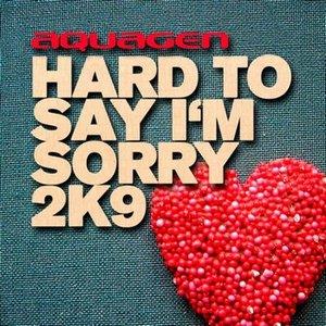 Imagen de 'Hard To Say I'm Sorry 2K9'