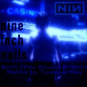 Image for 'Nine Inch Nails - Burn (You Stupid B1tch ReMix)'