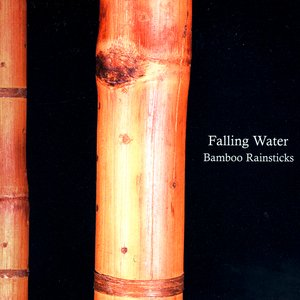 Image for 'Falling Water'
