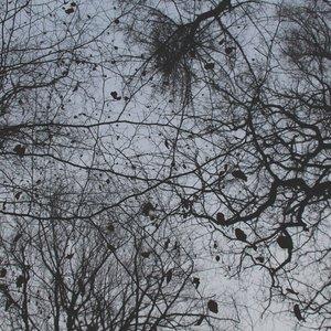 Bild für 'Wooden Mask'