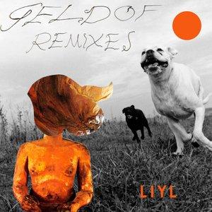 Image for 'Geldof Remixes'