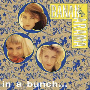 Image pour 'In A Bunch (The Singles 1981-1993)'