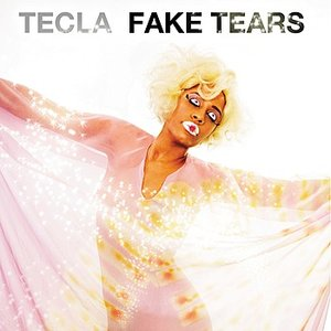 Image for 'Fake Tears'