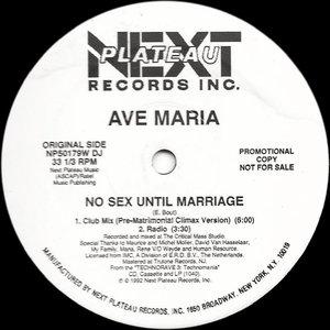 Immagine per 'No sex until marriage'