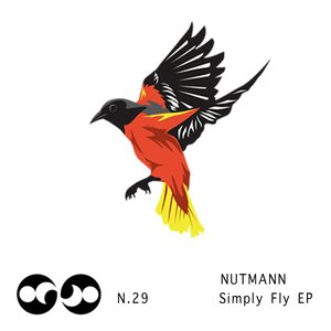 Image for 'Simply Fly EP'