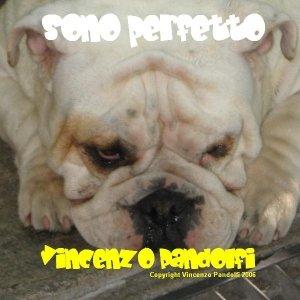 Bild für 'Sono perfetto'
