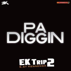 Image for 'Pa Diggin (EK Trip2)'