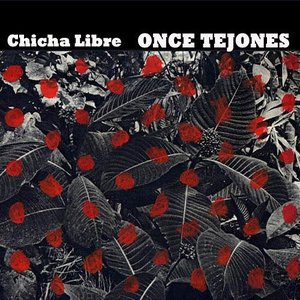 Image for 'Once Tejones'