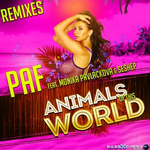Image for 'Animals of This World (feat. Monika Pavlackova, Seshep) [Remixes]'