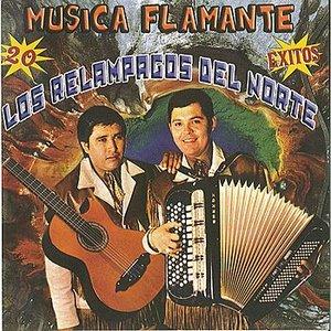 Image for 'Musica Flamante 20 Exitos'