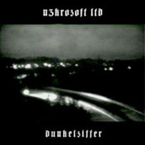 Image for 'Dunkelziffer'