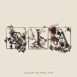 Image for 'Colour The Small One (International EU Version)'