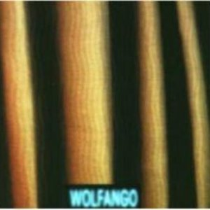 Image for 'Wolfango'