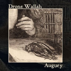 Image for 'Augury [wh141]'