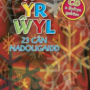 Image for 'Hwyl Yr Wyl'