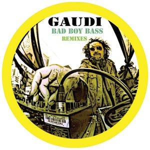 Image pour 'Bad Boy Bass Remixes'