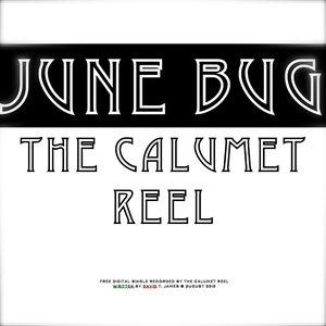 Imagen de 'June Bug Single'