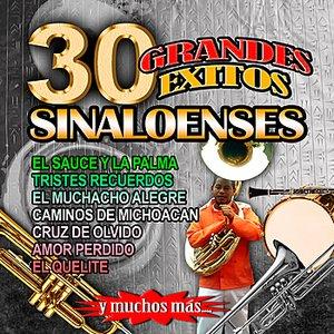 Bild für '30 Grandes Exitos Sinaloenses'