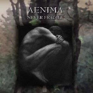 Image for 'Never Fragile'