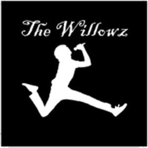Image for 'That Willowz! Feelin''