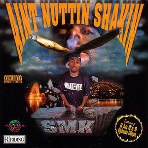 Image for 'Aint Nuttin Shakin'