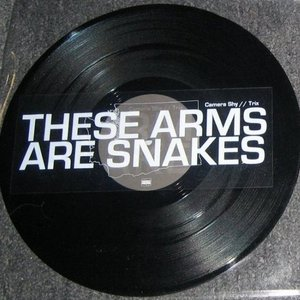 Bild för 'These Arms Are Snakes / Russian Circles'