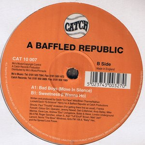 Image for 'A Baffled Republic'