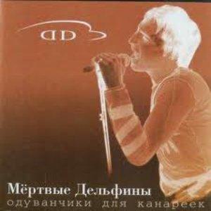 Image for 'Одуванчики Для Канареек'