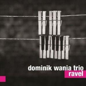 Image for 'DOMINIK WANIA TRIO'