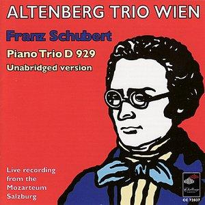 Image for 'Trio for Violin, Violoncello in E-Flat Major, Op. 100 D 929 Unabridged Version: Allegro Moderato'