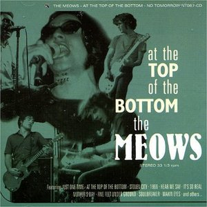 Image for 'At The Top Of The Bottom'