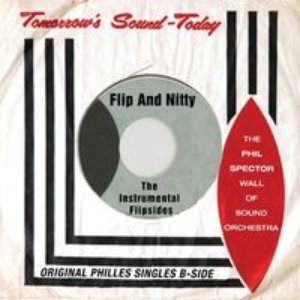 Immagine per 'Flip and Nitty - the Instrumental Flipsides'
