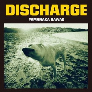 Image for 'Discharge'