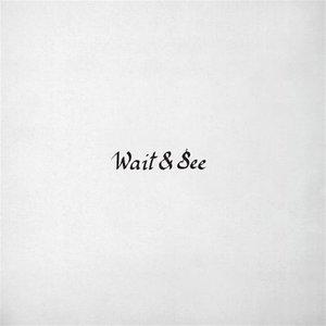 Bild für 'Wait & See'
