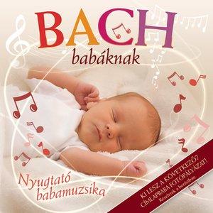 Image for 'Bach Babáknak'