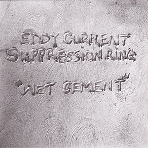 Image for 'Wet Cement'