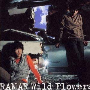 Bild für 'Wild Flowers'