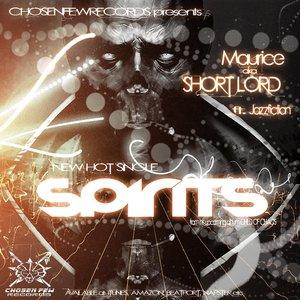 Image pour 'SPIRITS (feat. Jazzfiction) [Radio Version]'