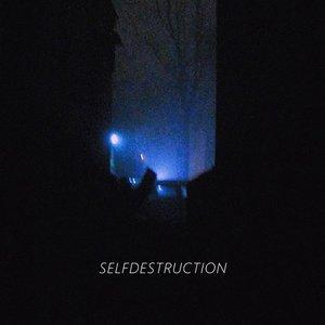 Image for 'SELFDESTRUCTION'