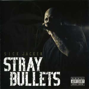 Image for 'Stray Bullets'