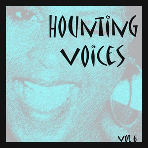 Image for 'Hounting Voices, Vol. 6 (Baby I Don't Care)'
