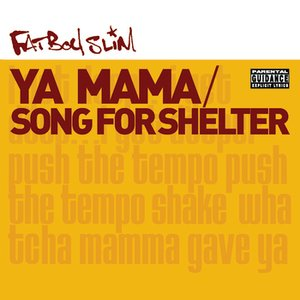 Image for 'Song for Shelter (The 20:20 Vision Rollin' Mix)'