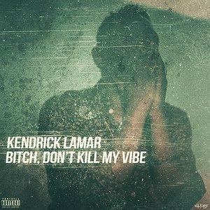 Imagem de 'Bitch, Don't Kill My Vibe'