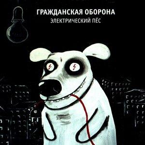 Image for 'Электрический пёс'