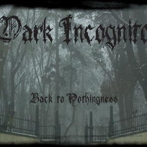 Image for 'Dark Incognito'