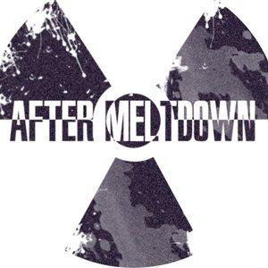 Image for 'After Meltdown'